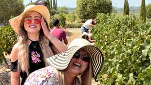 Grande Provence Harvest Festival 2020 promises to be a great day out