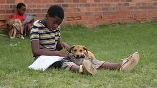 67 ways to help this Mandela Day: Using dogs to turn children into responsible adults