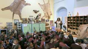 Cape Town celebrates International Museum Day with free entries