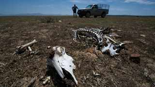 File picture: Henk Kruger/African News Agency (ANA).