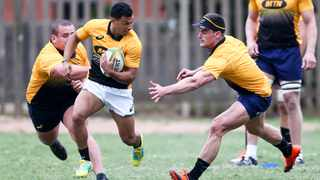 Embrose Papier is dynamite, and needs to get a chance to prove himself for the Springboks on Saturday. Photo: Leon Lestrade/African News Agency/ANA