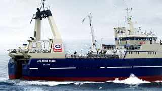 Sea Harvest is offering A$0.25 per Mareterram share, valuing the entire issued capital of the Australian firm at about A$38.6 million. File Photo: IOL