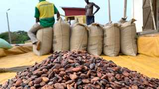 The strategic Ghana-Ivory Coast partnership to produce and market cocoa jointly is a watershed moment. File picture: Ange Aboa/Reuters