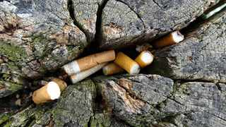 """Littered cigarette butts can cause """"serious damage"""" to the environment, experts have found. Picture: PxHere"""