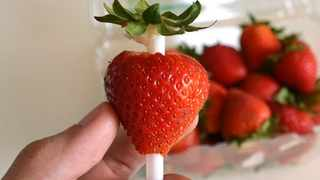 Using a straw to remove the top of a strawberry. Supplied
