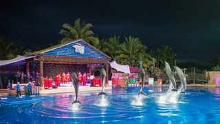 Dolphins by Starlight at Ushaka Marine World takes place every year. Picture Leon Lestrade/ANA