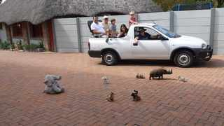 A family decided to get creative during the lockdown when they planned a safari at home. Picture: Twitter.
