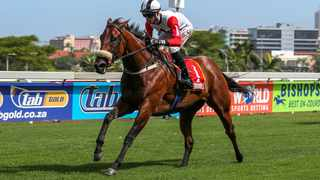 True To Life has impressive natural speed and appears in the eighth race against some top class sprinters over 1 000m. Picture: Candiese Lenferna