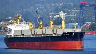 The Top Grace, the vessel off which stowaways Hassani Rajabu, 24, and Amiri Sarumu, 20, were cast on the KZN coast in March.