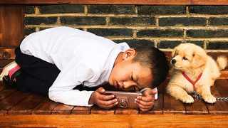 Pre-school children may be better behaved and kinder if they have a family dog, a study has found. Picture: PxFuel