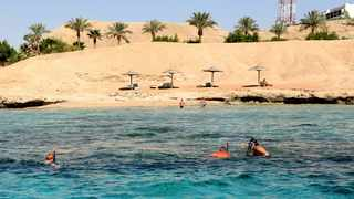 Tourists snorkel at the Red Sea resort of Sharm el-Sheikh. in Egypt.  REUTERS/Asmaa Waguih