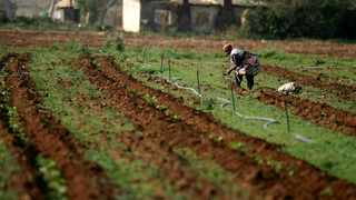 Farmers are looking to technology to boost security in the face of recent farm attacks and related agricultural crime. File picture: REUTERS