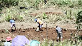Cato Crest community members invaded a piece of land in the area, marking plots with red tape and digging trenches, in preparation to start building.     Doctor Ngcobo African News Agency (ANA)