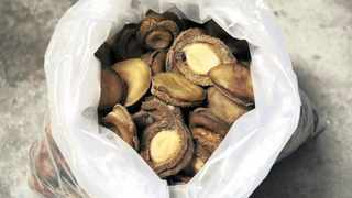The fishing community in Gansbaai have given a cautious welcome to news that abalone poaching will be reclassified as a serious priority crime. File picture: REUTERS