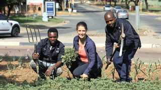 PAUL NYIRENDA, Adri Brooks and Abraham Newa in one of the gardens they created and maintained at the traffic circle on the corner of Waterkloof and Rupert streets in Brooklyn.     Jacques Naude  African News Agency (ANA)