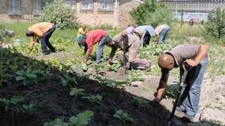 The food garden project, established by Nompumelelo Ngoqo, has been changing lives for 19 years. Picture: Supplied
