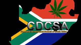 The CDCSA says it has branches in all provinces to ensure all who trade in cannbis pay their taxes. Photo: Supplied