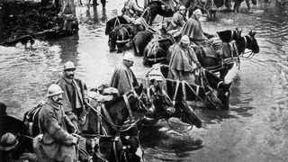French train horses resting in a river on their way to Verdun. Pic: National Geographic Magazine/Wikimedia Commons