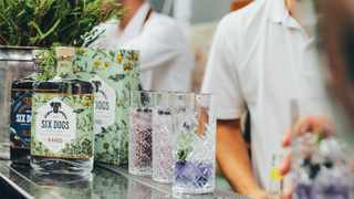 The Original Gin and Tonic Festival returns to Cape Town  Picture: Supplied
