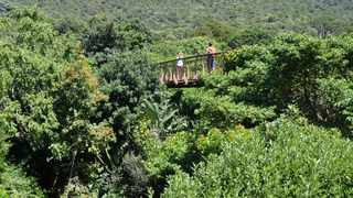 South Africa's botanical gardens to reopen from next week after Covid-19 closure. Picture: Supplied.