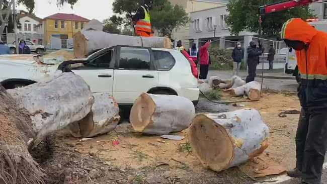 WATCH: Storm destroys homes, cuts power and uproots trees in Cape Town