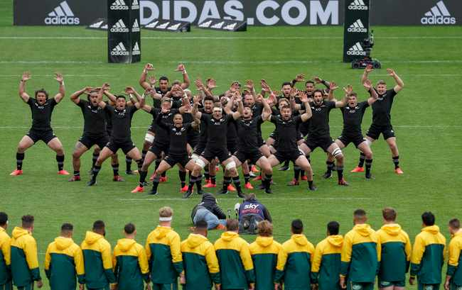 All Blacks and Wallabies draw exciting first Bledisloe Cup test, Newsline