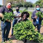 e86d4141 3954 5179 8994 9ef4cdc30058&operation=CROP&offset=142x0&resize=1216x1216 - Durban's homeless gardeners score contract with chain store