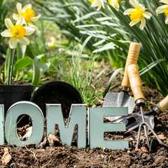 Rejuvenate your home this spring and improve its value