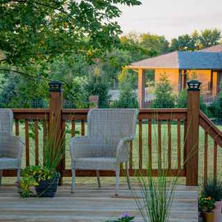 8 Steps to a sustainable garden