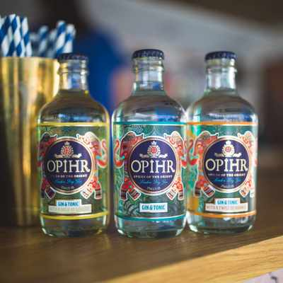 HOW WILL YOU BE DRINKING GIN THIS SUMMER?