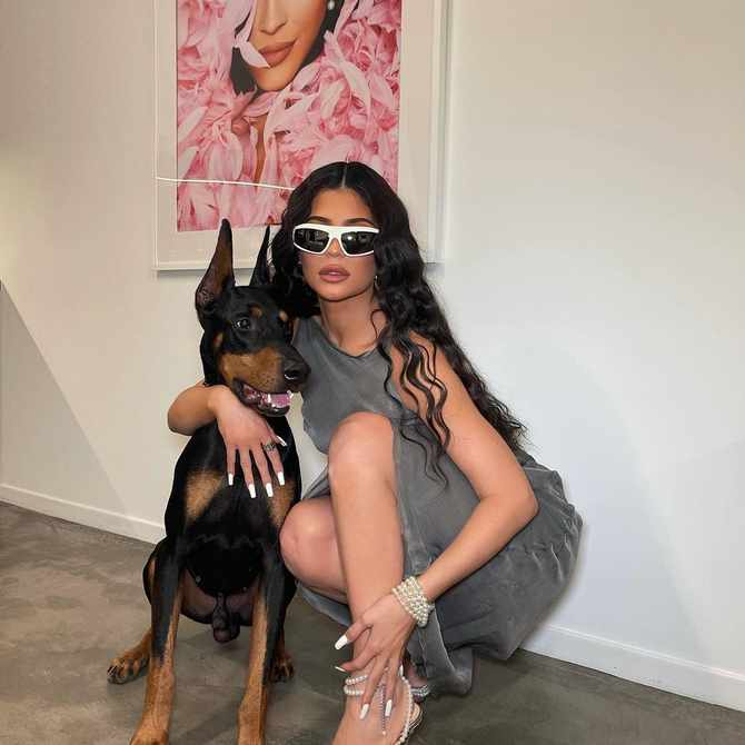 Man arrested for trespassing at Kylie Jenner's home